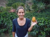 Irene's favourite fruit - Pitaya